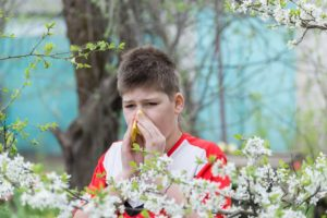 allergie-pollens